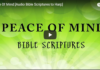 Peace Of Mind [Audio Bible Scriptures to Harp]