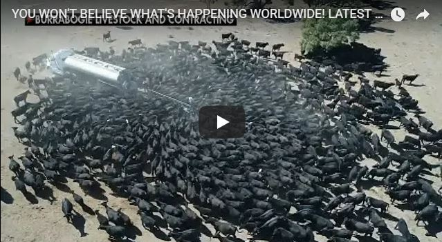 YOU WON'T BELIEVE WHAT'S HAPPENING WORLDWIDE! LATEST END TIMES NEWS AND CURRENT EVENTS! AUG 12/2018