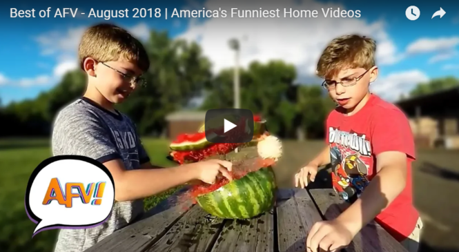 August 2018 | America's Funniest Home Videos
