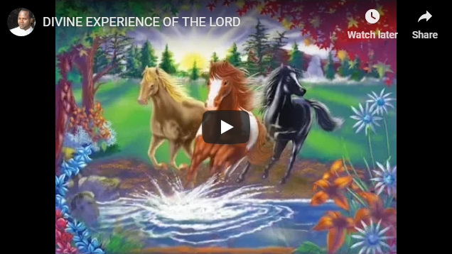 DIVINE EXPERIENCE OF THE LORD