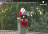 You won't just LAUGH- The FUNNIEST CHRISTMAS moments