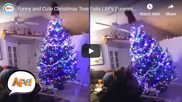 Funny and Cute Christmas Tree Fails | AFV Funniest Fail Videos
