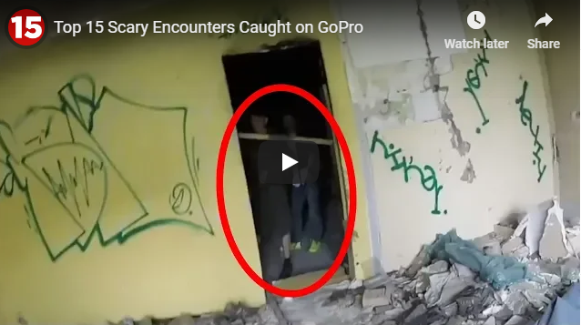 Top 15 Scary Encounters Caught on GoPro