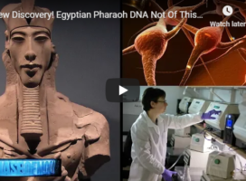 New Discovery! Egyptian Pharaoh DNA Not Of This World? 2019-2020