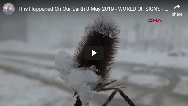 This Happened On Our Earth 8 May 2019 – WORLD OF SIGNS