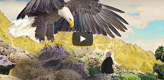 I'm Visiting Heaven & an Eagle Drops This on Me… | Sid Roth & Robin McMillan