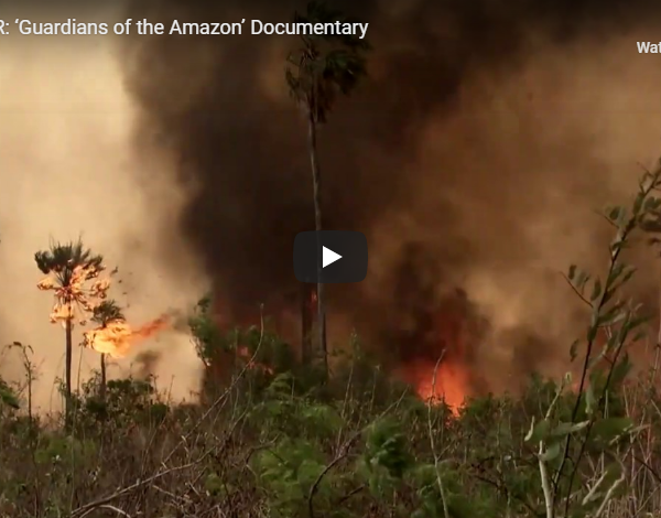 TRAILER: 'Guardians of the Amazon' Documentary
