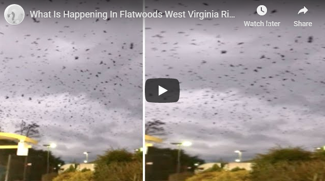 What Is Happening In Flatwoods West Virginia Right Now?